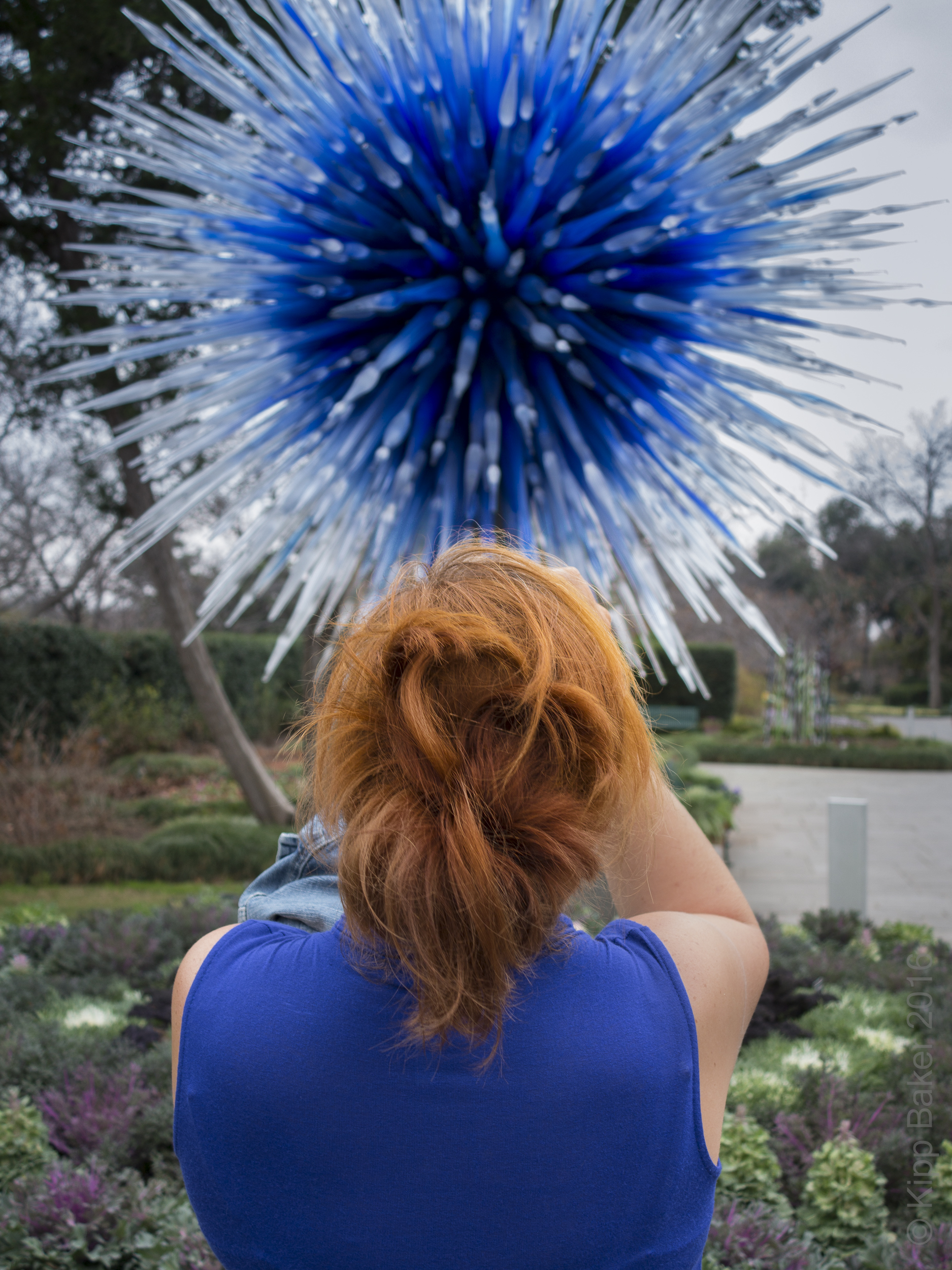 Chihuly Exhibit, Dallas, 2012