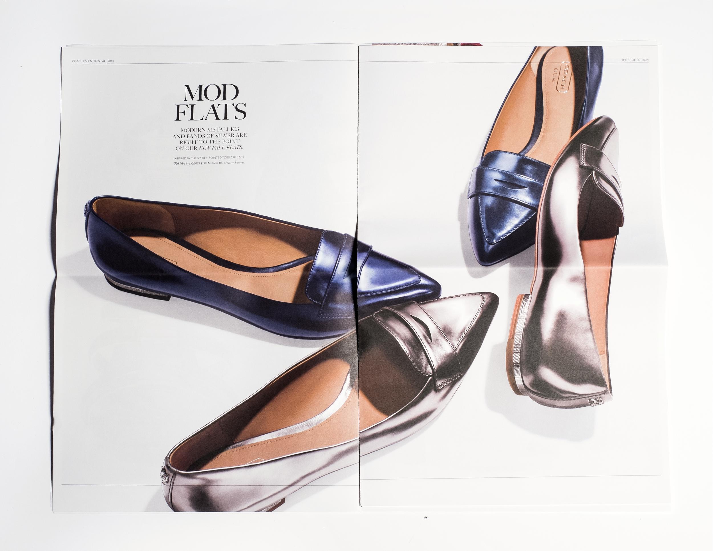 shoescat1.jpg
