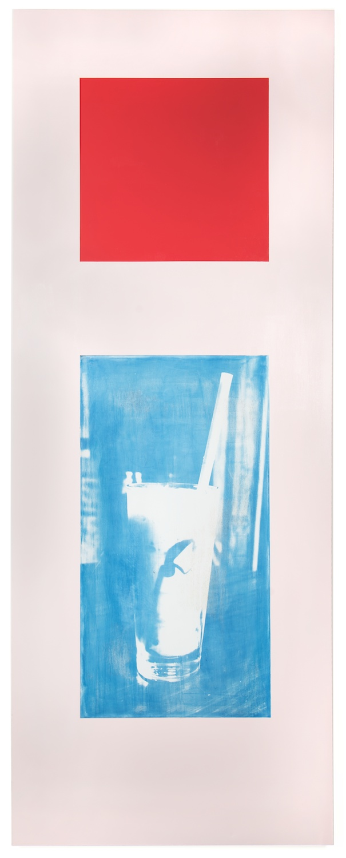 Dan Rees  High Tea (Shake)  2013 Latex paint and cyanotype on wooden door 83 ⅞h x 32 ¼w in DR008
