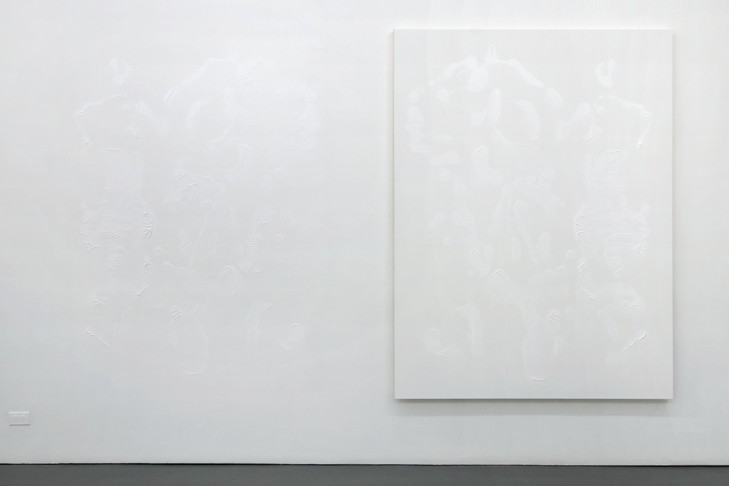 Dan Rees  Zinc White  2012 Acrylic paint on canvas, imprint on wall 78 ¾h x 59 ¹⁄₁₆w in DR002