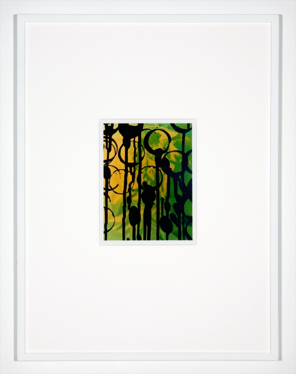 "Anthony Pearson Untitled (Hybrid) 2010 Framed color photograph 17"" x 12"" AP253"