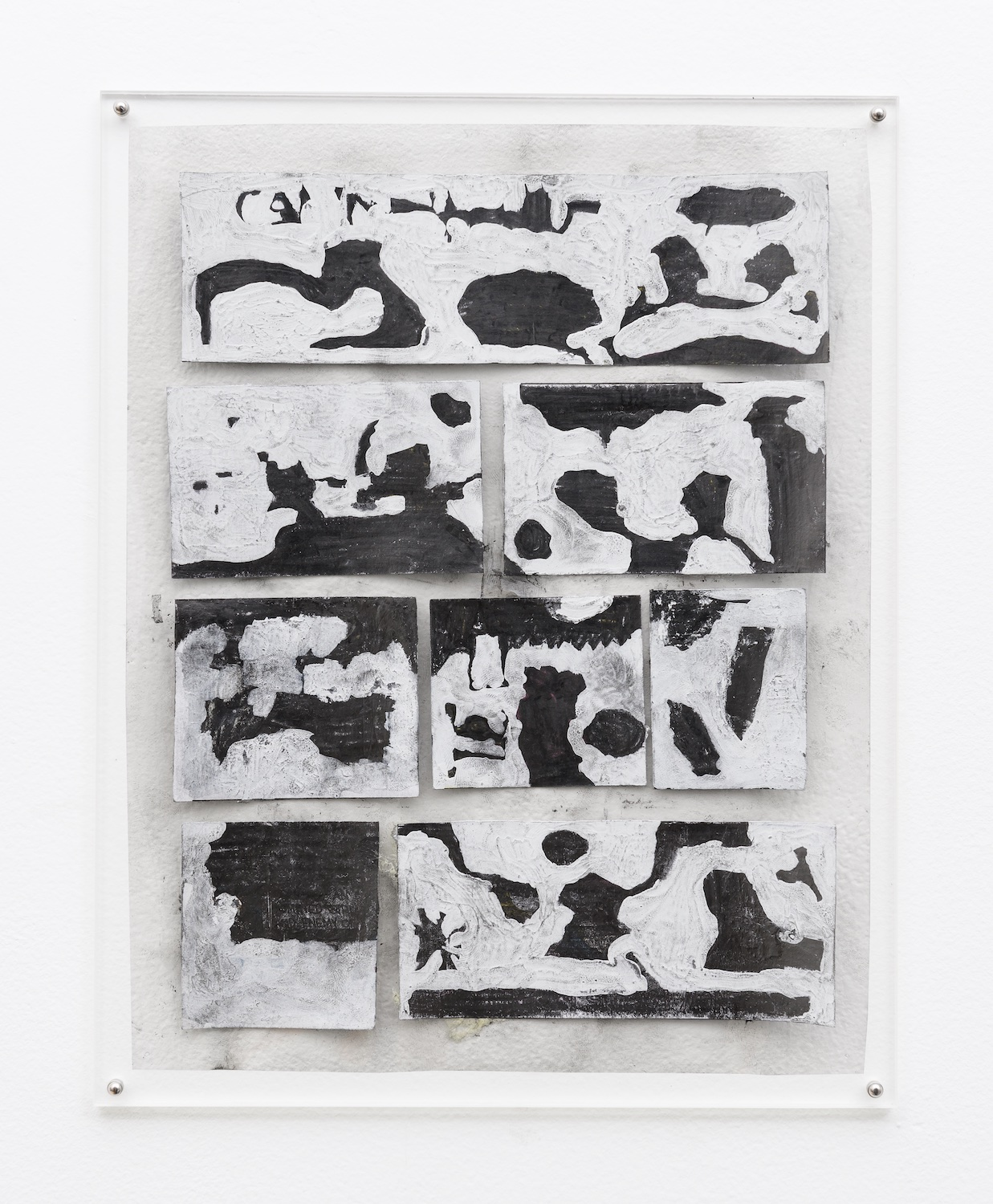Tony Lewis  ...Also Known As Gym Class  2014 Pencil and graphite powder on paper and transparency 11h x 8 ½w in TL244