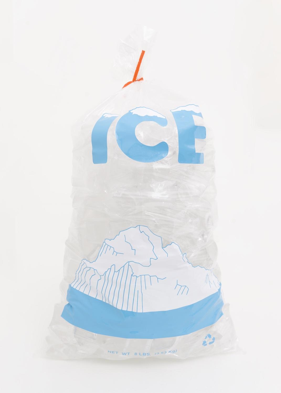 Chris Bradley  Ice Bag (Glacier)  2014 Glass, plastic bag, and cut vinyl 15h x 8w x 6d in CB119