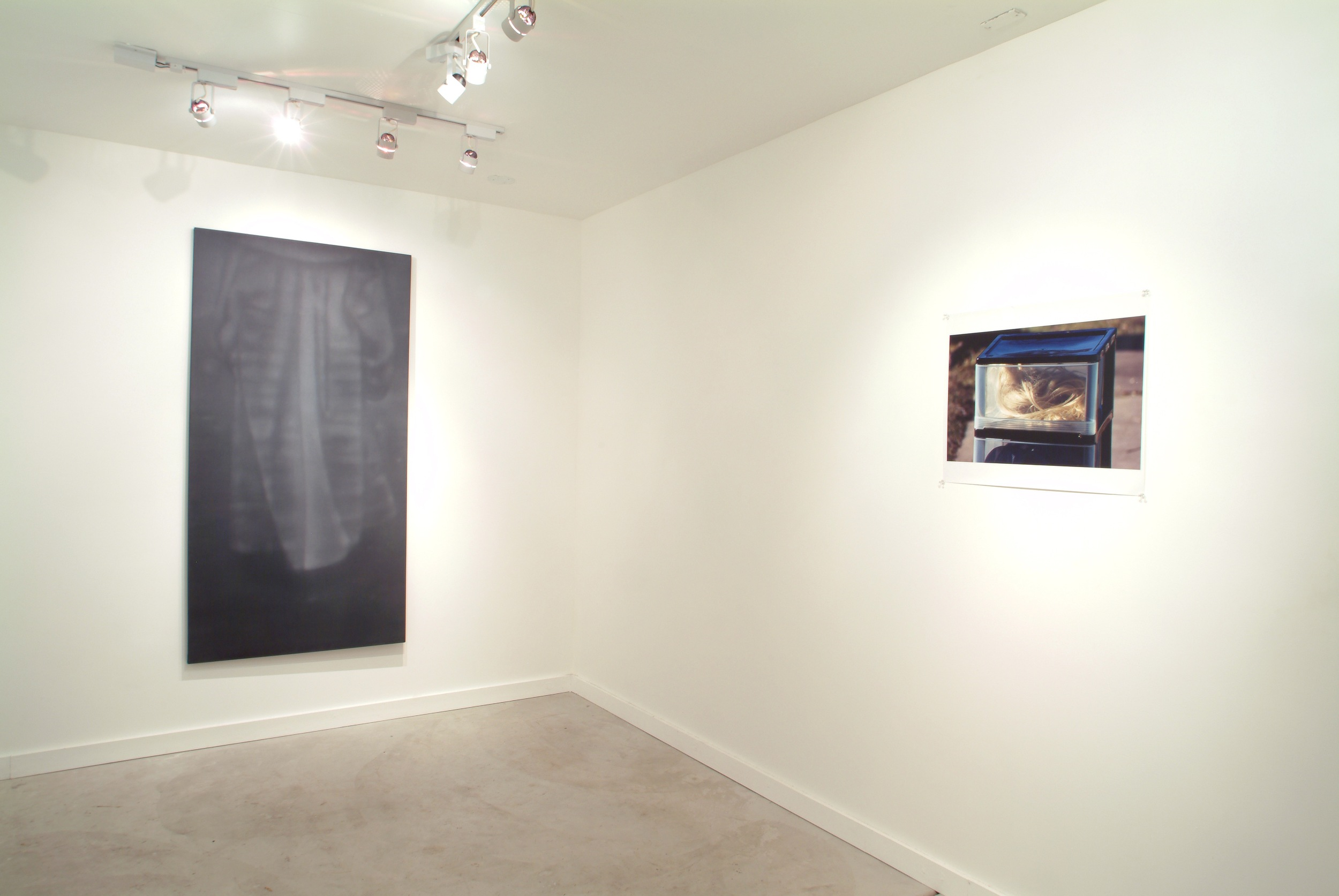 Troy Brauntuch 2004 Shane Campbell Gallery, Oak Park Installation View