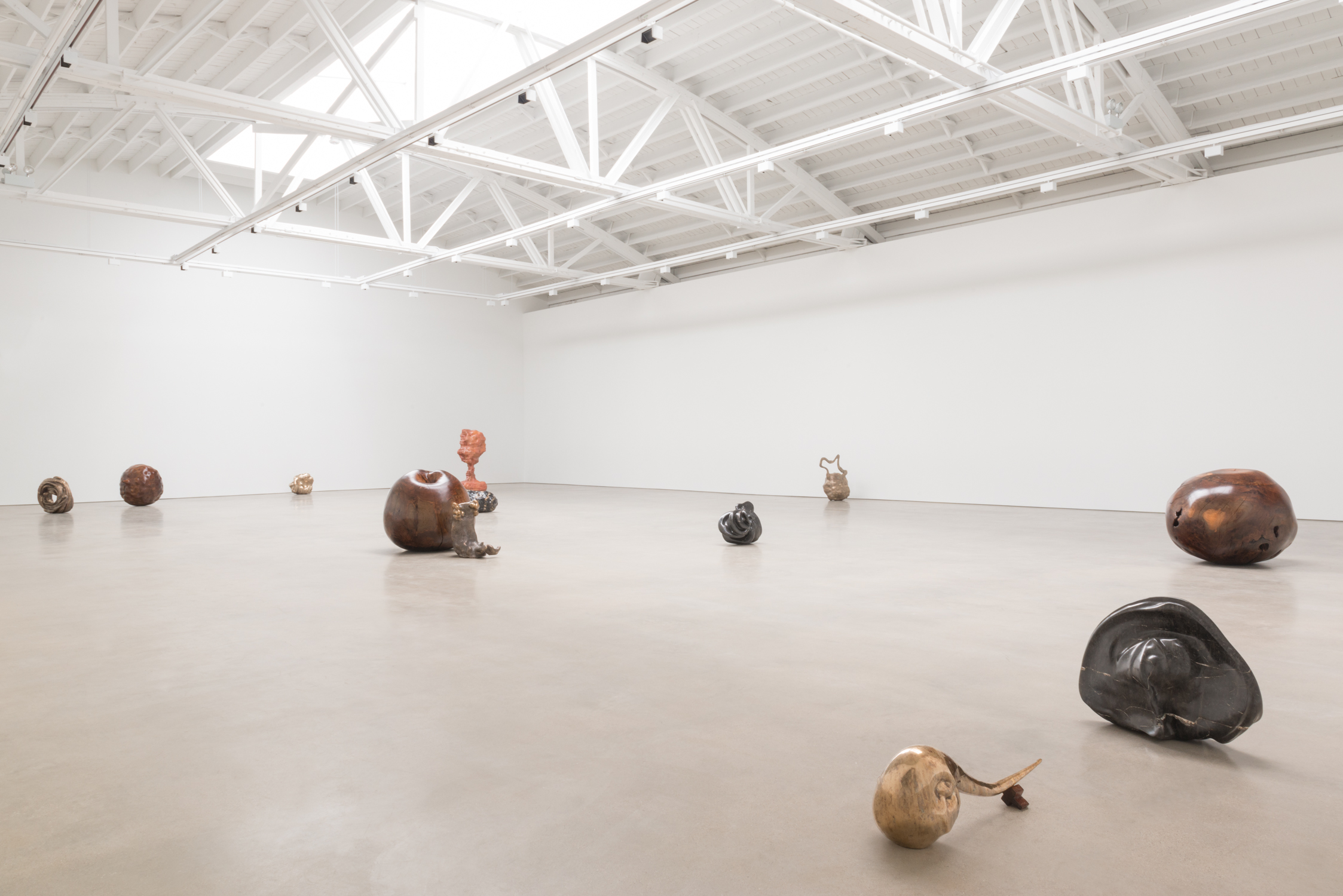 Alma Allen 2016 Shane Campbell Gallery, South Loop Installation view