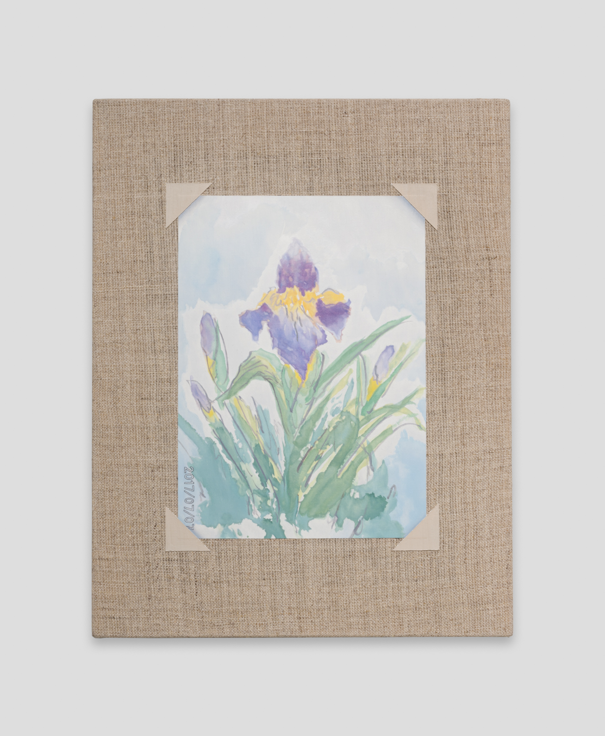 Mika Horibuchi  Watercolor of an Iris  2018 Oil on linen 11h x 8 ½w in MHor002