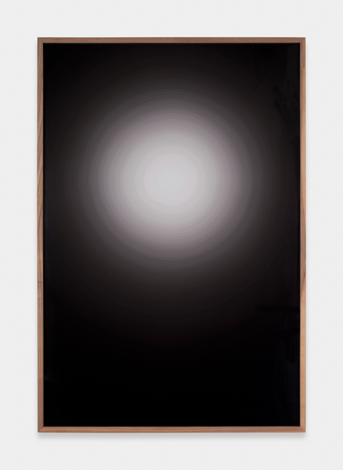 Anthony Pearson  Untitled (Flare)  2011 C-print in artist's frame 53h x 37w x 1 ½d in AP283