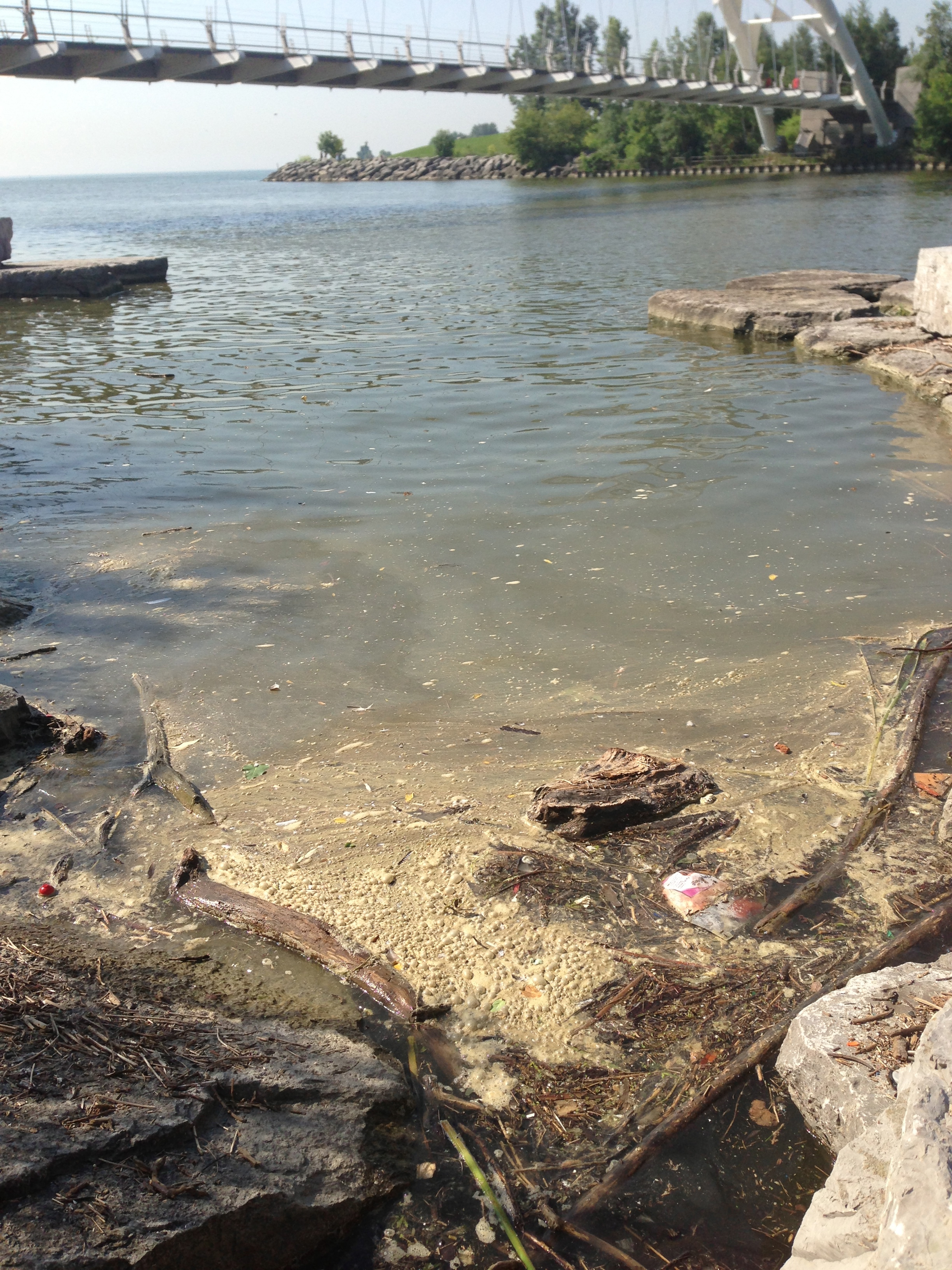 Pollution from the Toronto storm and Humber Wastewater Treatment Plant wash ashore, July 16, 2013. Photo by Lake Ontario Waterkeeper.