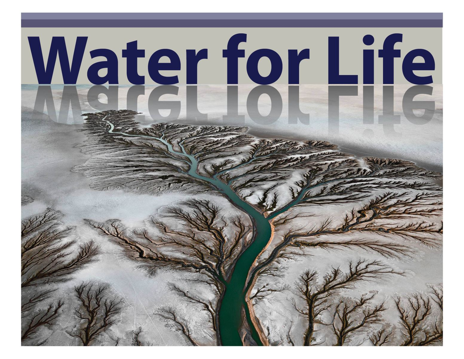 Water for Life Image.jpg