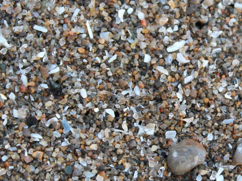 Close-up of Toronto's shoreline at Scarborough Bluffs Park. (Photo: Ruby Pajares)