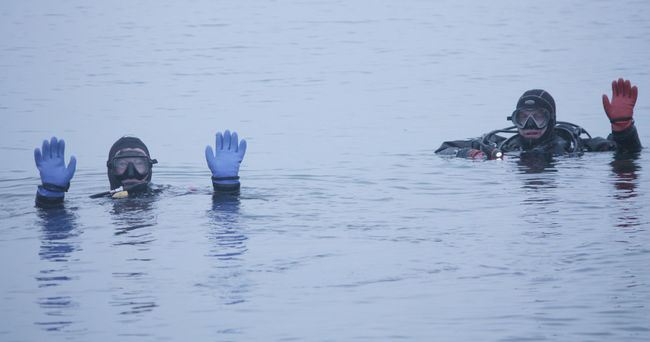 Divers popping up for a breath in Kingston, Ontario. (Photo by Jolson Lim/For The Whig-Standard)