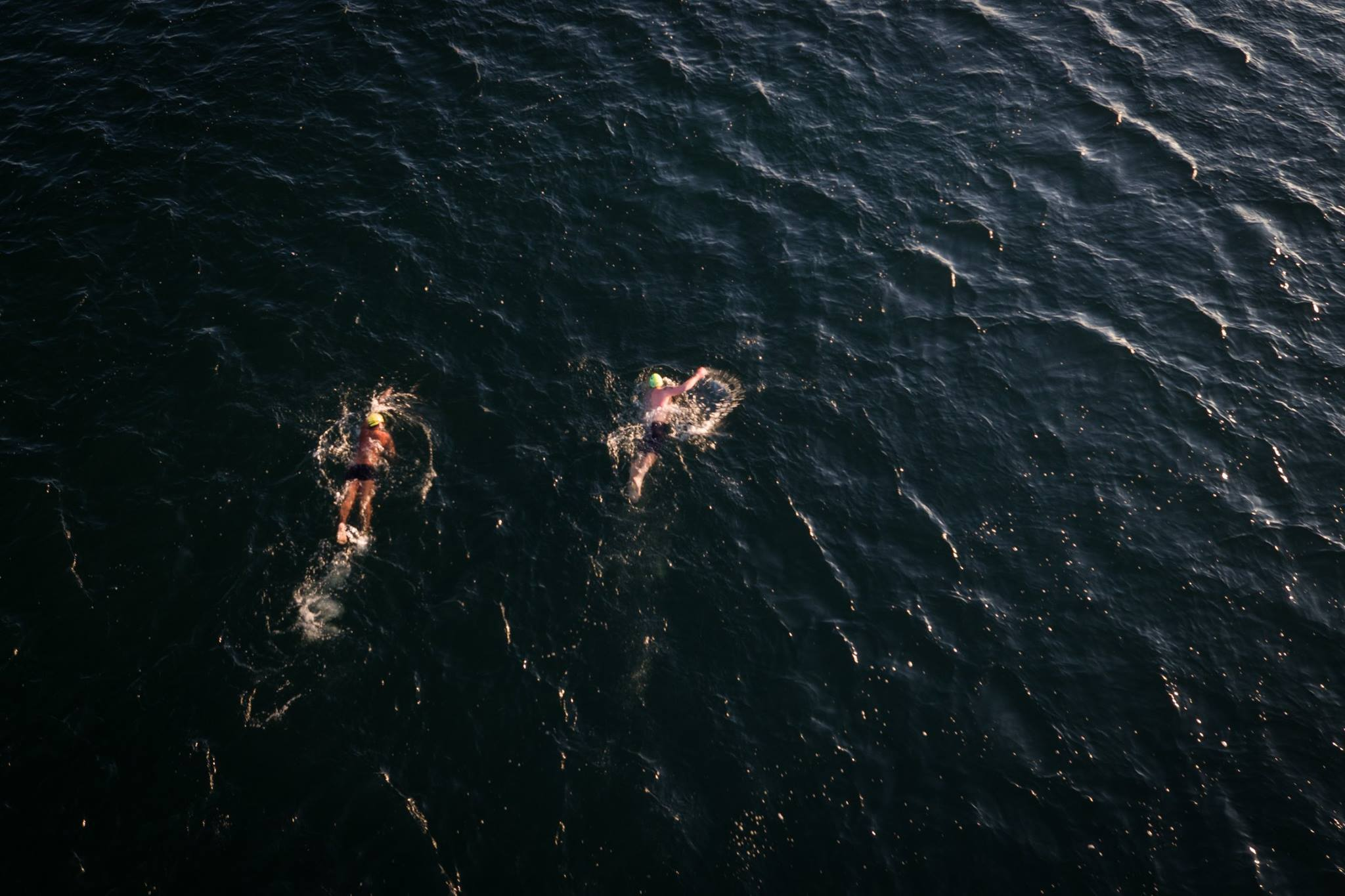 Great Lakes Trust open water swimmers testing the lake's autumn waters. (Photo by Dylan Neild)
