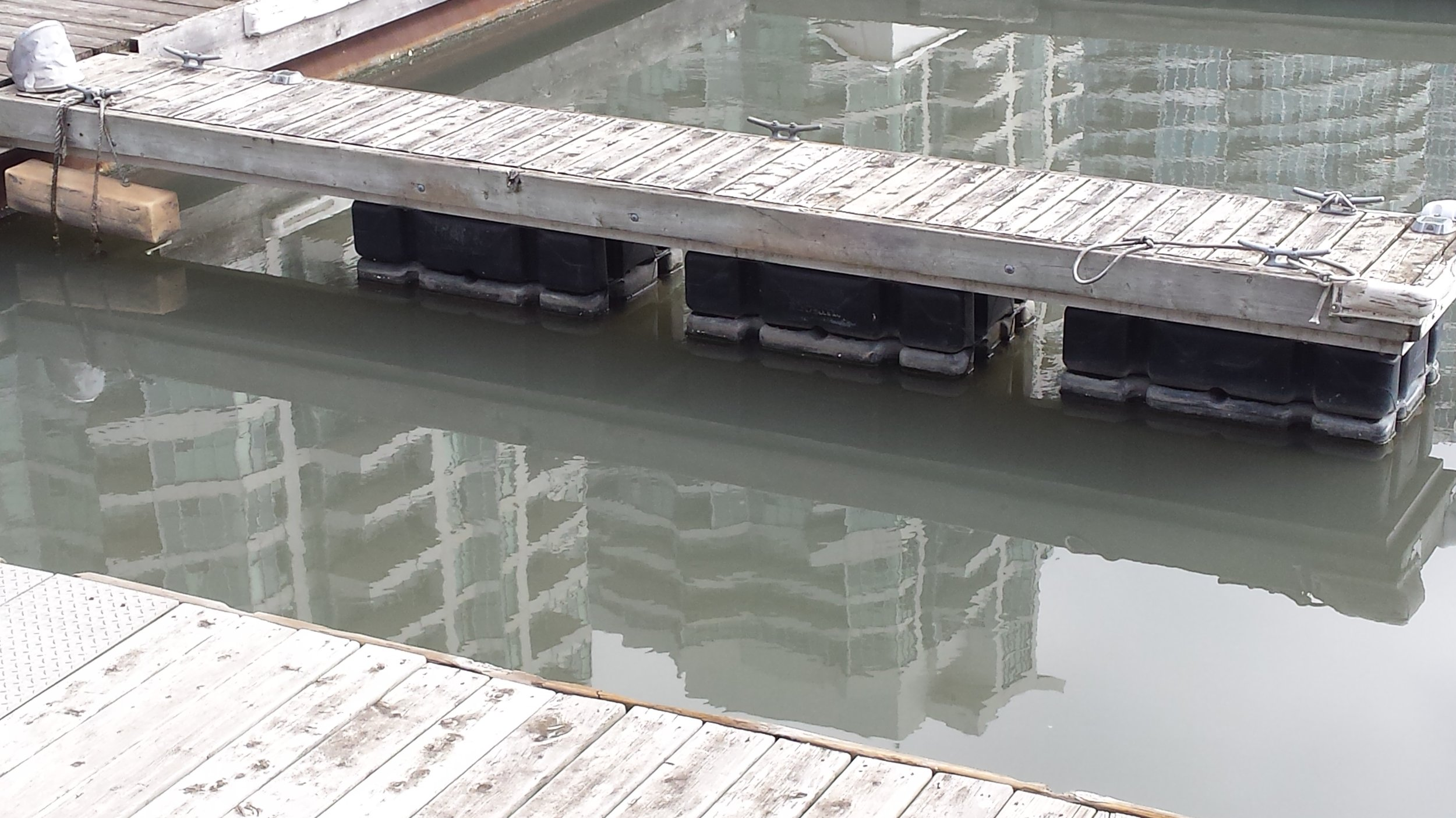 On a clean day, the water is typically dark green in colour. Photo by: Lake Ontario Waterkeeper.