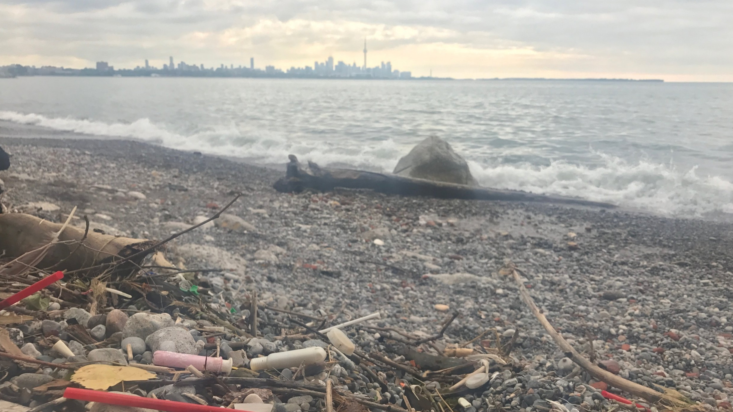 In the distance, the City of Toronto skyline as seen from Humber Bay West Park. In the foreground, tampon applicators dot the beach.