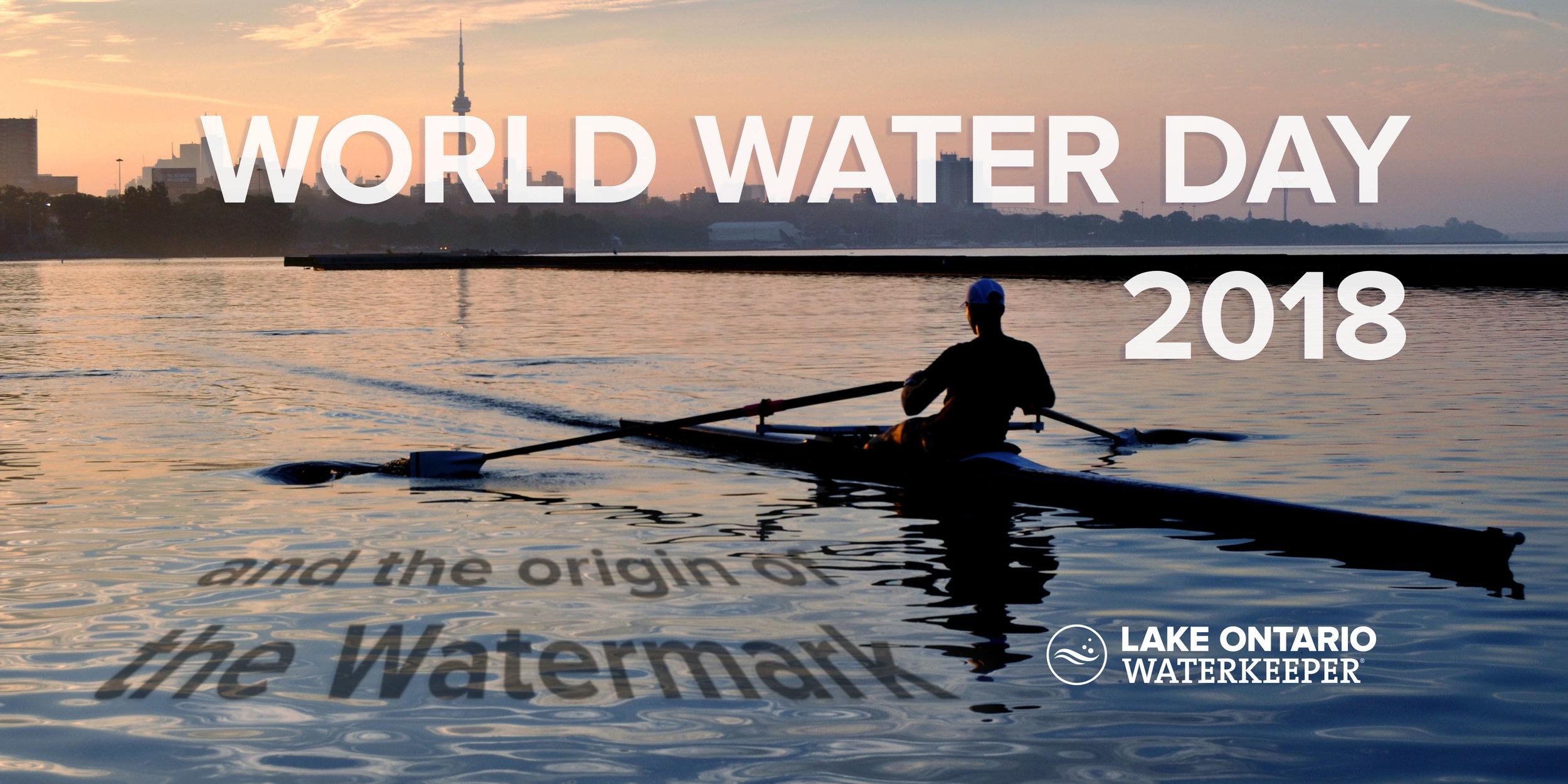 LOW banner WWD.jpg