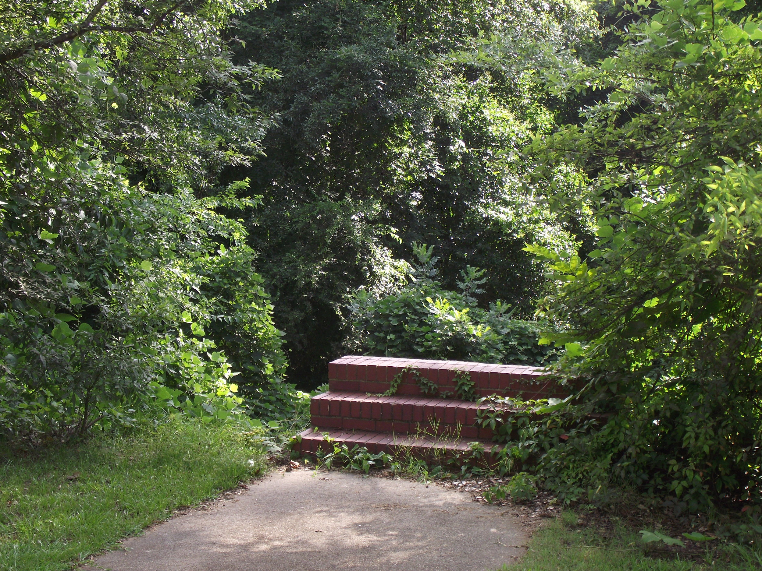 Front Steps Milledgeville, GA