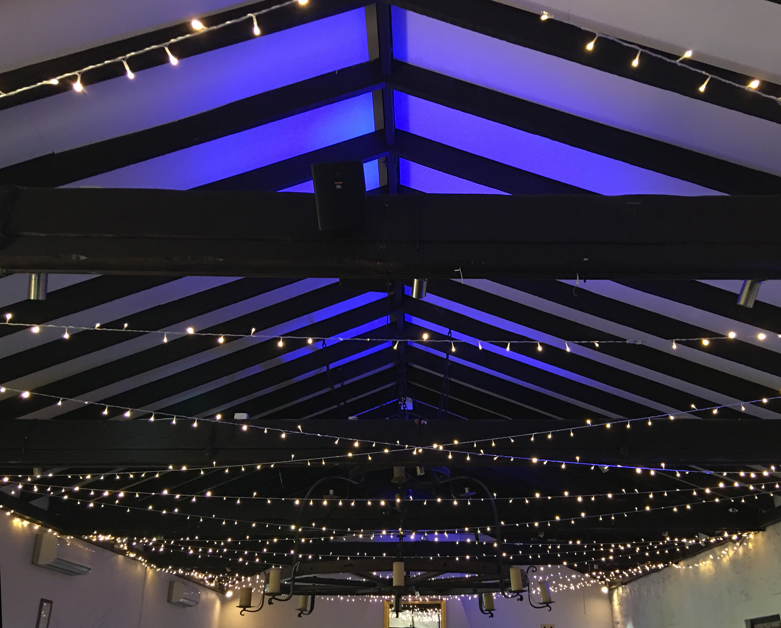 LightsBlue copy.jpg