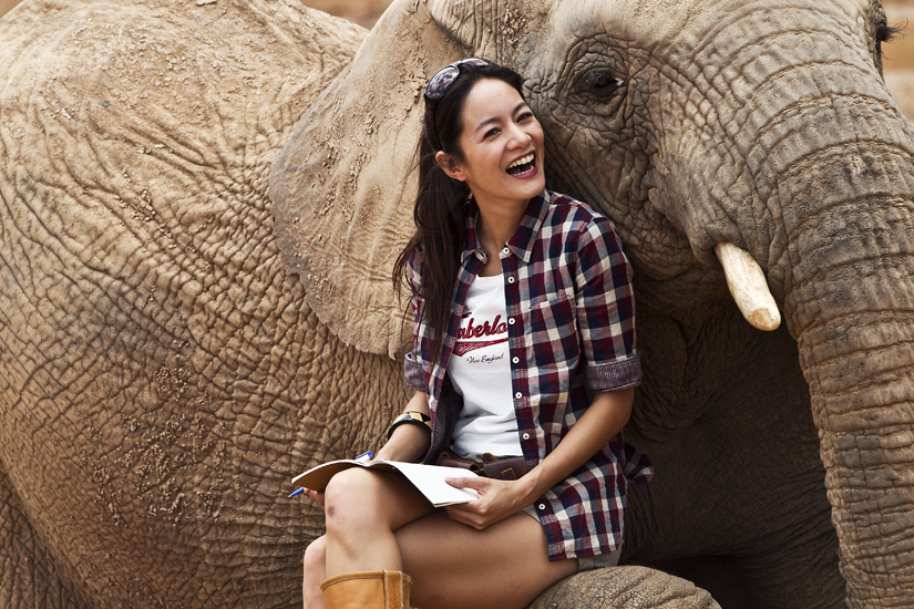 elephantnotebook.jpg