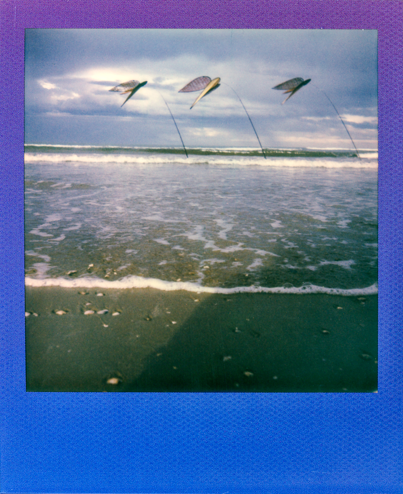 polaroid summer blues edition one step 2 andrea giacomelli fotografo