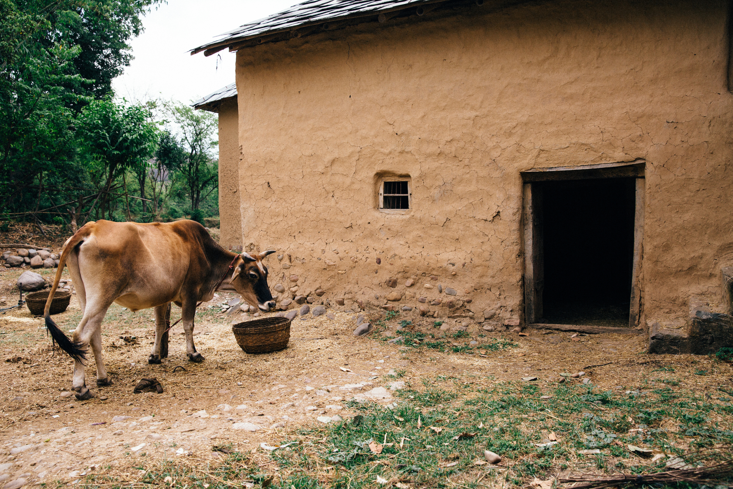 In the village, India