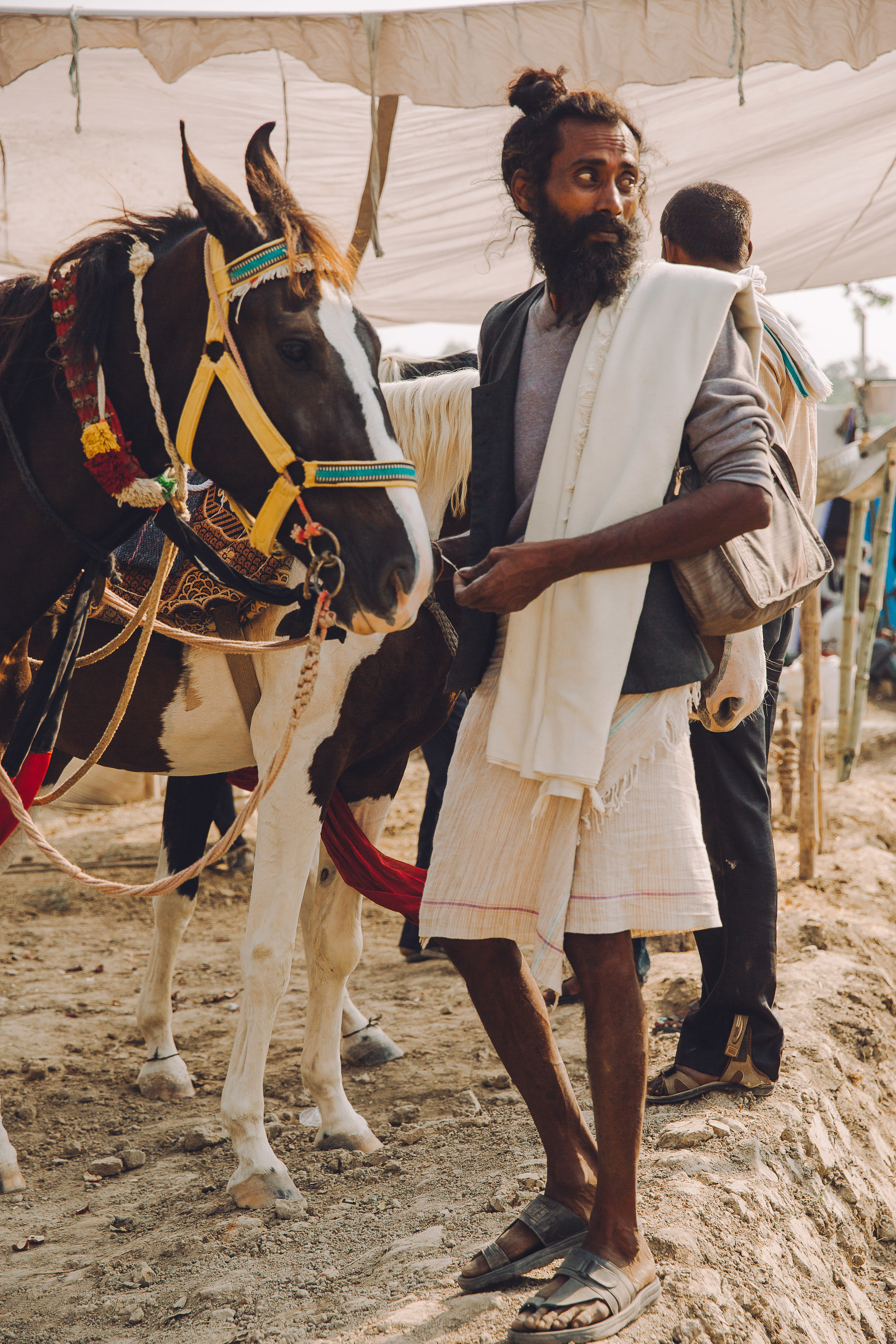 Life at the Equine Fair, India