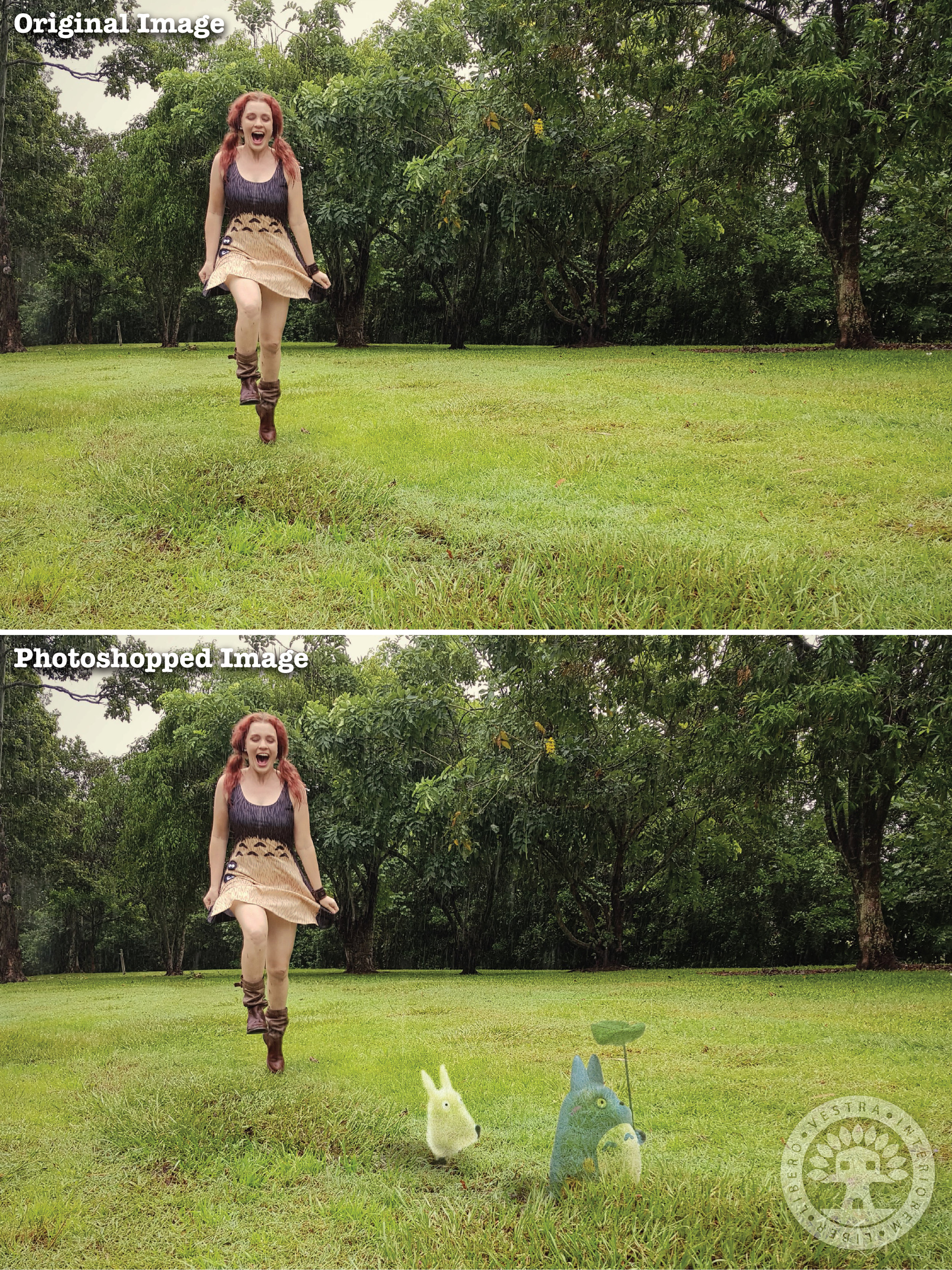 """""""Totoro Dress"""" before and after Photoshop . ~ Corinne Jade, ClubHouse Collective"""