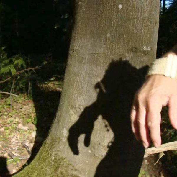 Schattenfotografie