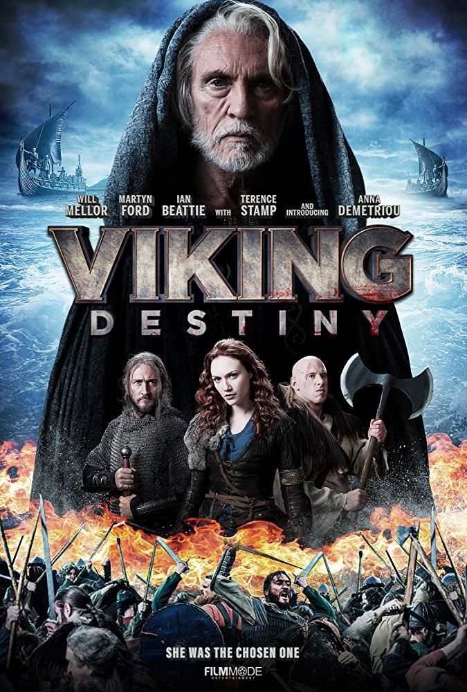 Viking Destiny.jpg