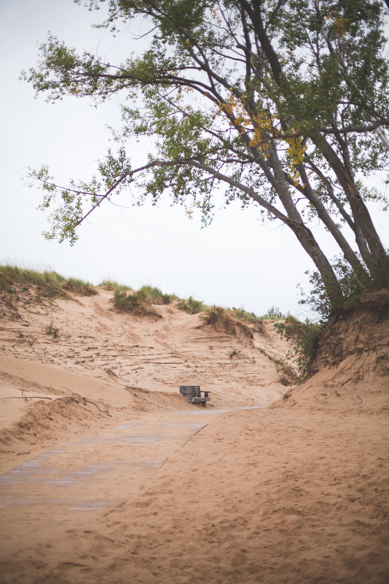 Ford Fall Rally-24.jpg