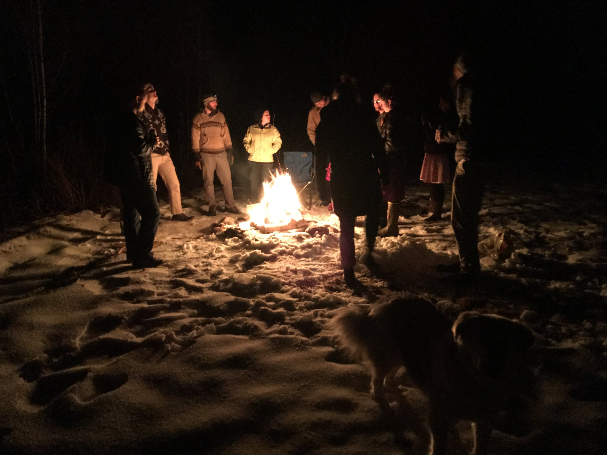 One of my favorite parts of Vermont New Year is that we can't do it without a fire.