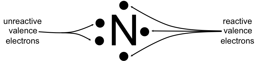 Figure 6.   Lewis dot diagram of nitrogen.  Nitrogen has five valence electrons. Two valence electrons will pair with each other and be unreactive in a covalent bond. The other three unpaired valence electrons will react with other atoms in a covalent bond.
