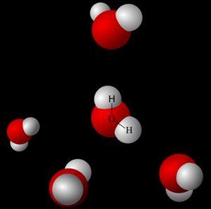 Figure 12.   Hydrogen bonding in solid water, or ice.  Ice is a solid at a molecular level because hydrogen bonds form among all the water molecules forming a lattice structure. This lattice structure (or crystalline structure) is more spread out than liquid water, due to the polarity (and bent shape) of the water molecule. Molecules that are more spread out generate substances that have lower density. This is why ice floats on water.