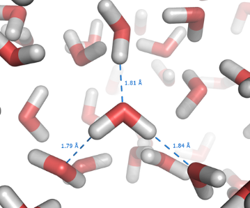 Figure 11.   Hydrogen bonding in liquid water.  The electronegativity of a water molecule is responsible for the liquid nature of water. Hydrogen bonds form between adjacent O atoms and H atoms of different H20 molecules. These molecules readily form and detach. Liquid water molecules are randomly assorted and continually attaching and detaching, giving the property of liquid water a fluid state. Liquid water is much denser than ice, because its molecules are more compact (dense) than the crystalline lattice of ice.