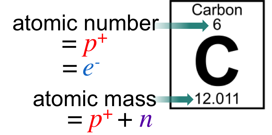 Figure 3.   Calculating subatomic particles.  The atomic number represents the number of protons of an element and the number of electrons when the atom is not in a chemical bond. Neutrons of the most common isotopes can be calculated using the atomic mass.