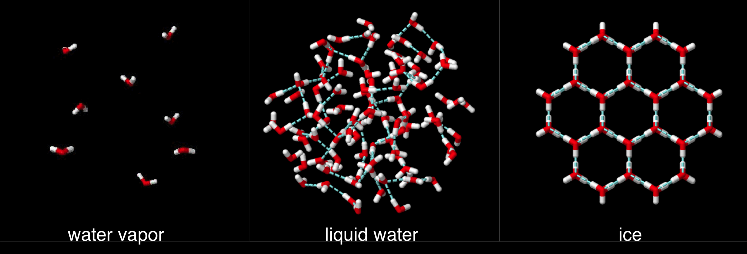 Figure 15 .  States of water.  Water vapor is gaseous water molecules nearly devoid of hydrogen bonding. Water is liquid due to the constant formaing and breaking of hydrogen bonding (blue dashed lines) among neighboring molecules. Ice forms when all potential hydrogen bonds are formed among neighboring molecules. Due to the water bent structure, ice molecules are more spread out relative to liquid water, causing it to be less dense.  Media source .
