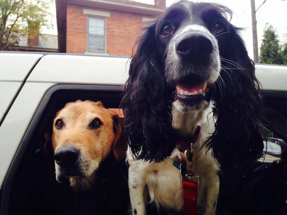 Otto and Bella