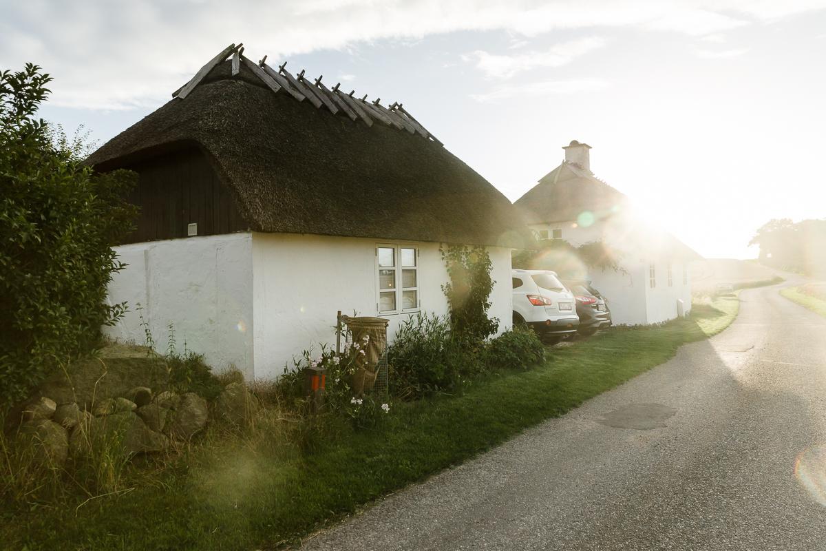 KellySwedaPhotography.Denmark-1.jpg