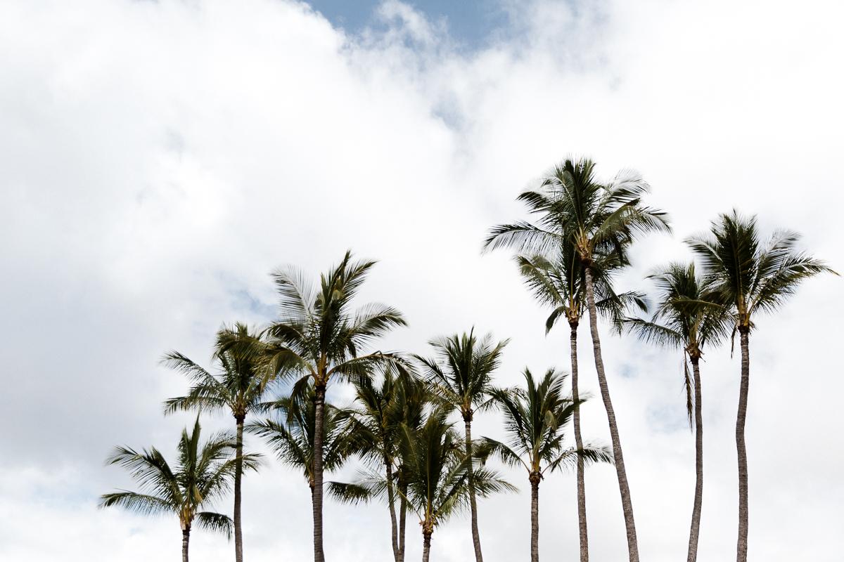 KellySwedaPhotography.Hawaii_web-5945.jpg