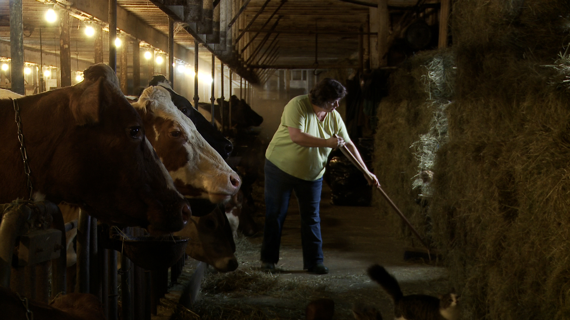 Image of Laura Chase working at her family's Chase Organic Farm via  Google .