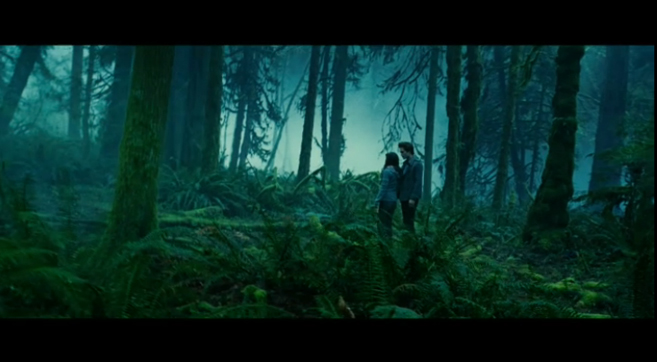 PHOTO CREDIT: Above Twilight screenshot is of a scene filmed in the woods of Oxbow Park where Edward and Bella have their rendez-vous.