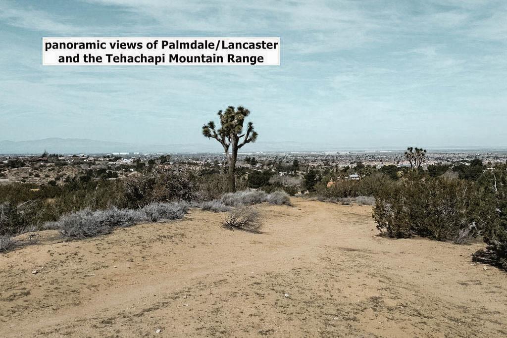 ranch-8.jpg