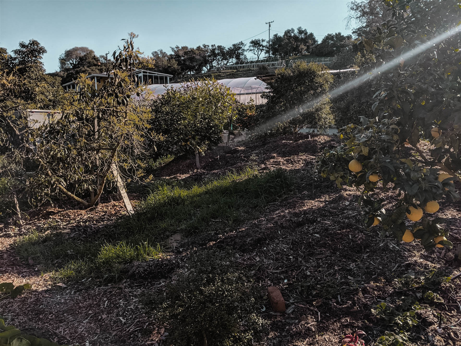 seasmokefarm-11.jpg
