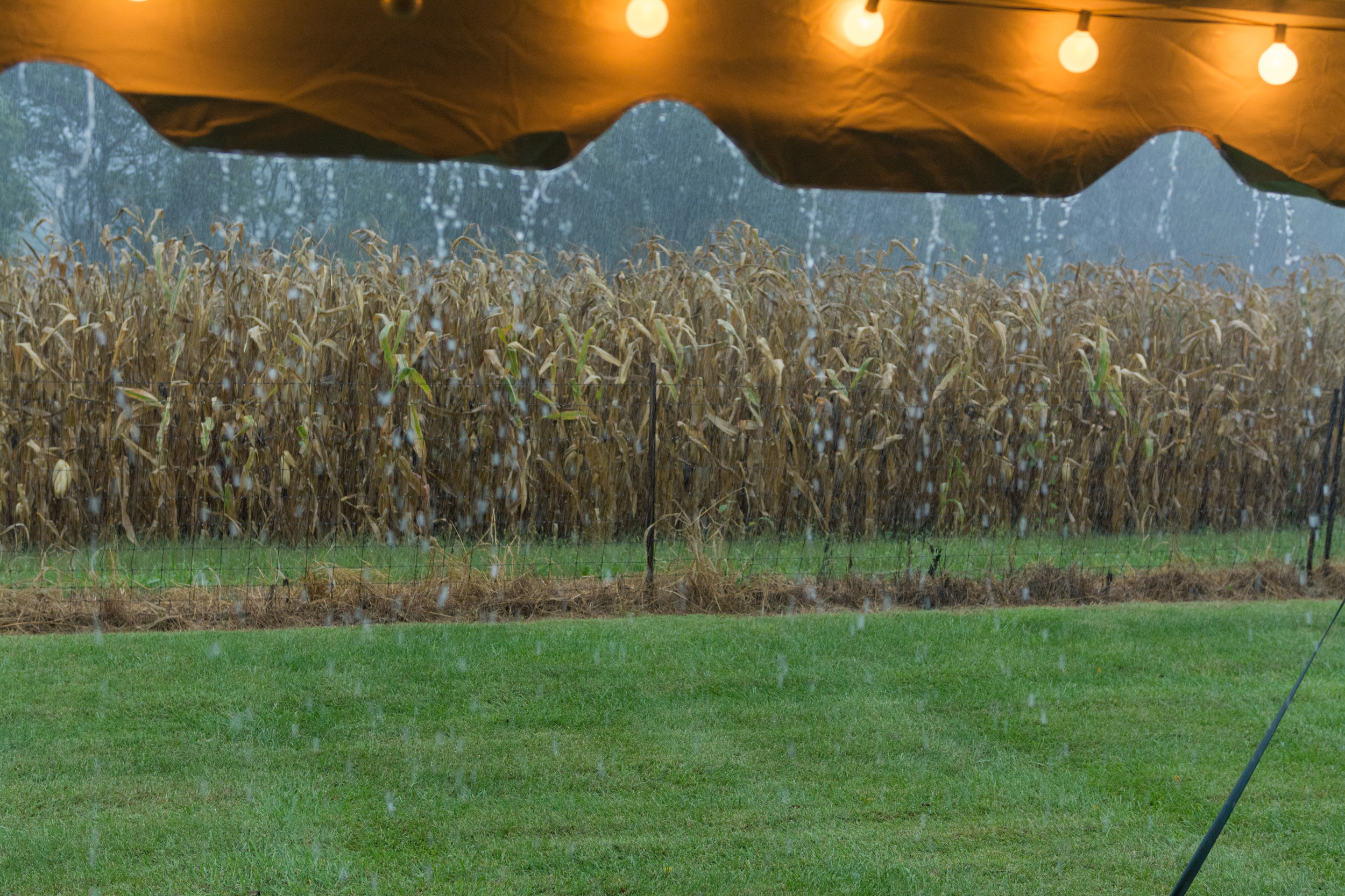 Life_by_pictures_photography dick wedding mount sterling ohio september_7.jpg