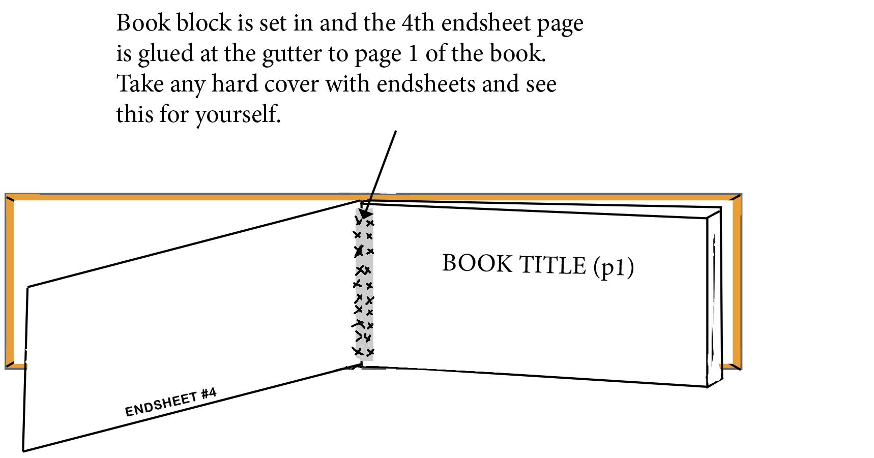 endsheets 2.jpg