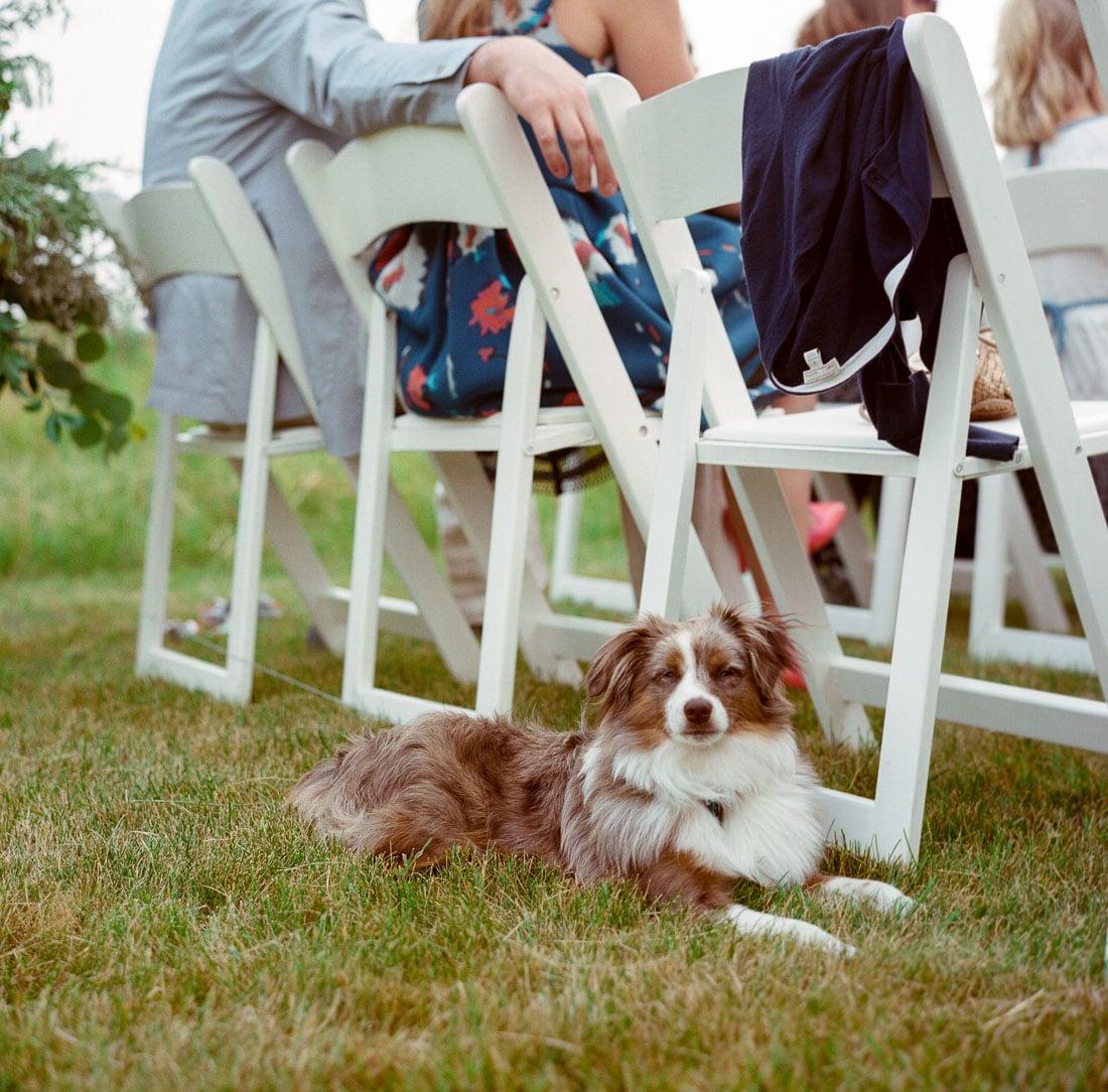 kateweinsteinphoto_milwaukee_wedding_tent-154.jpg