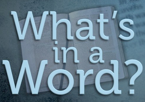What's in a word.jpg