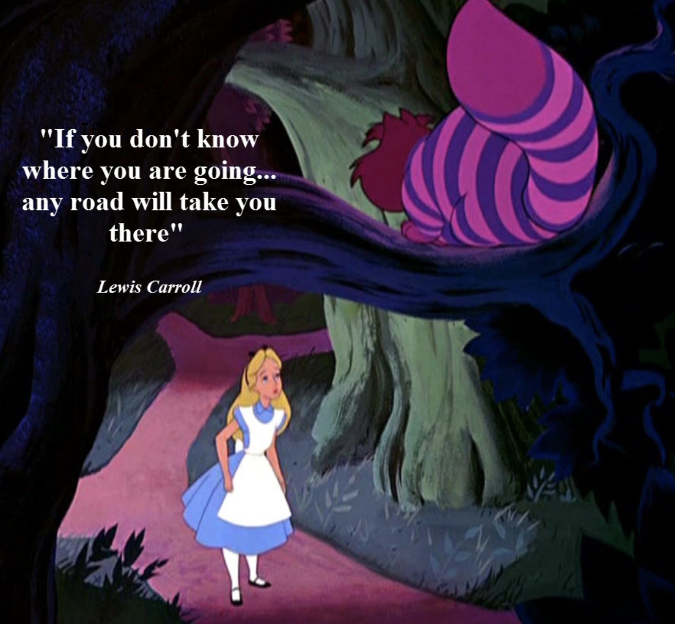 cheshire cat- any road will take you there.jpg