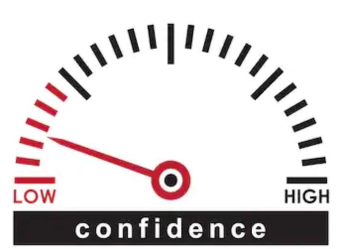 low_confidence.jpg