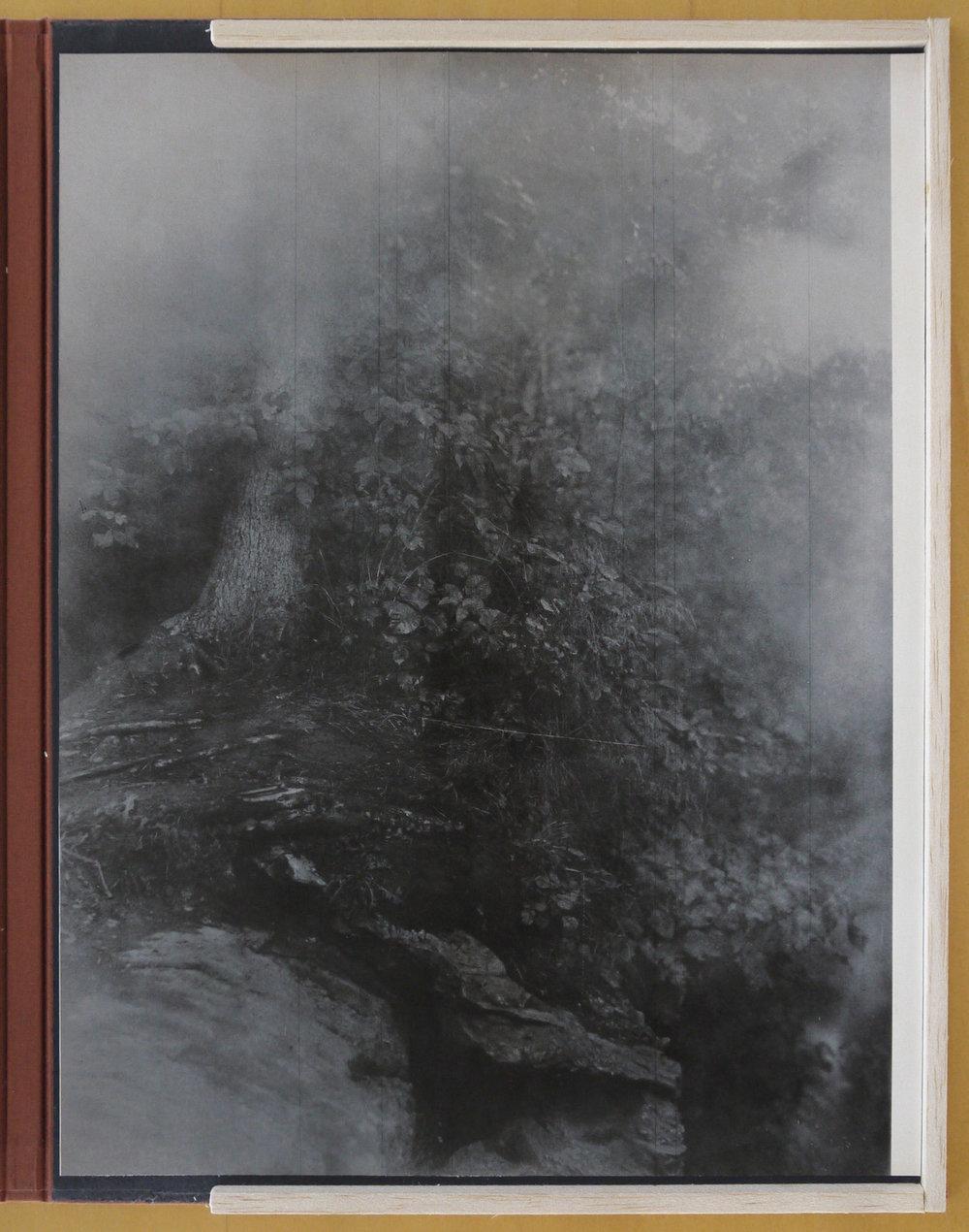 Raymond Meeks,  Cabbage White Folio  ( link )