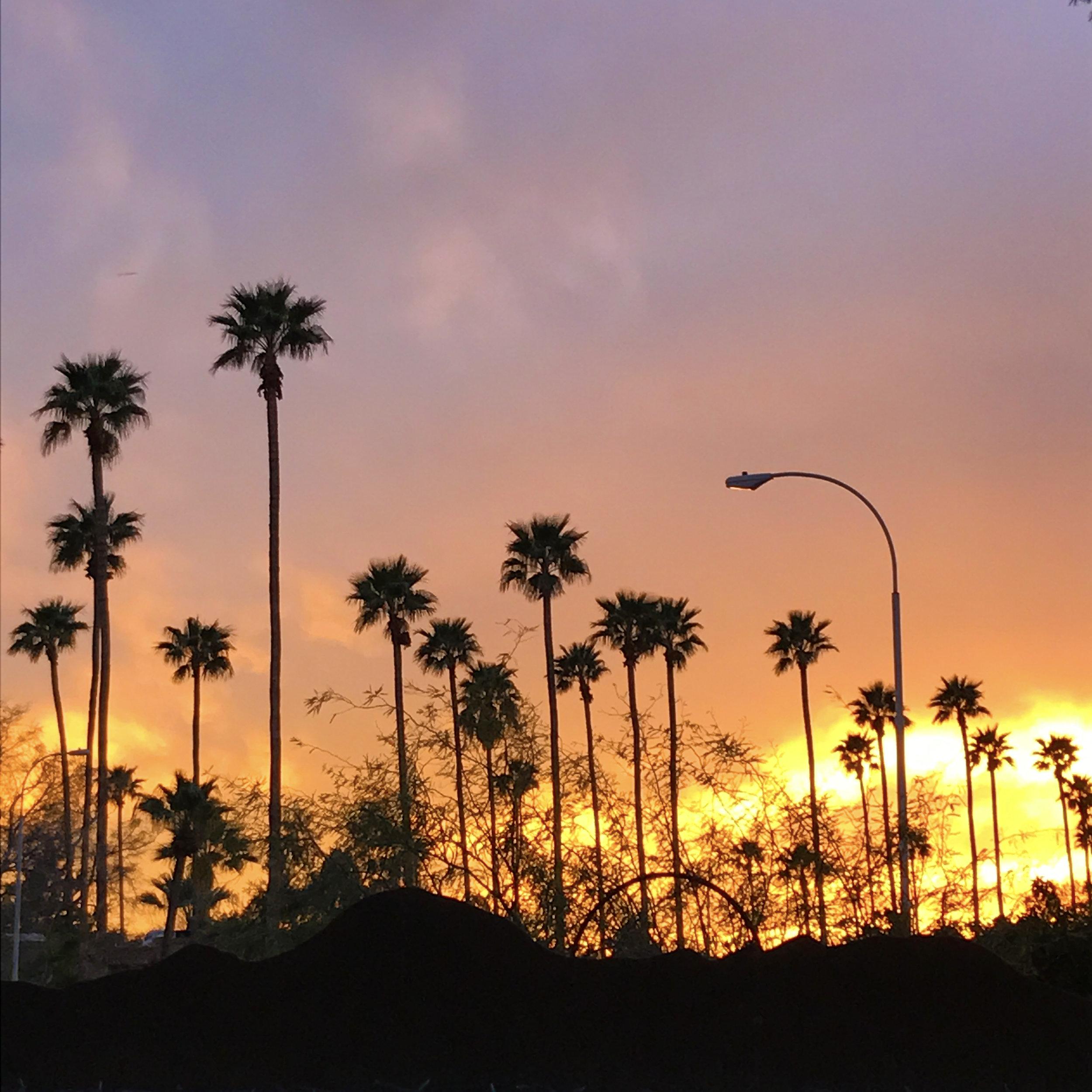 Sunset_backyard.jpg